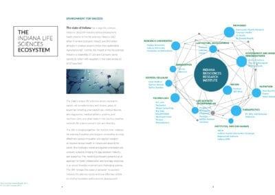 IBRI-Annual-Report-2016-v9_Page_3